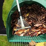 16 Products To Help You Clean Up Your Yard